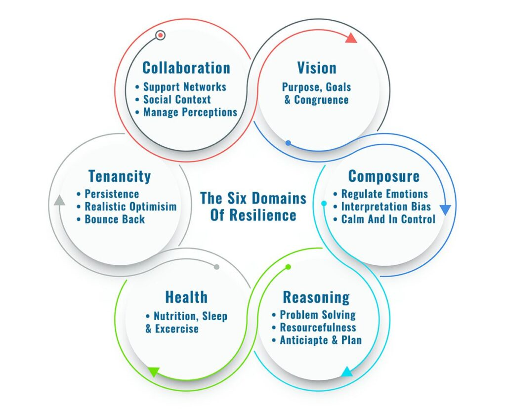 Diagram of the Six Pillars of Resilience